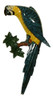 Tropical Macaw Blue Parrot Tiki Wall Nursery Bath Decor