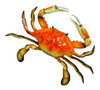 Large 17 Inch Replica Steamed Crab Wall Beach Decor