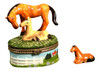Horse Pony Colt Mare Pasture Lovers Trinket Box phb