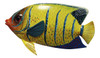 Big 12 Inch Tropical Fish Tiki Sea Life Bath Wall Decor Yellow Tail 12TFW36
