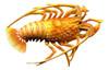 10 Inch Lobster Beach Bath Wall Tiki Kitchen Kid Pool Wall Plaque Decor