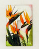 Tropical Bird of Paradise Single Switchplate Wall Cover