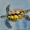 Sea Turtle Swimming in Blue Waters 4X4 Inch Ceramic Tile