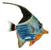 Blue and Orange Fish Wall Decor 12 Inches12ANGW07A Resin