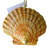 Tropical Beach Seashell Yellow Christmas Ornament ORNShell015 Resin 4 Inches