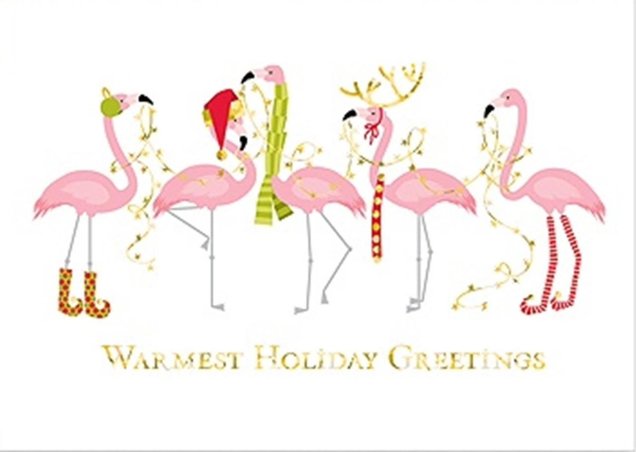Flamingo Christmas Cards.Fashionista Pink Flamingos 18 Christmas Holiday Boxed Greeting Cards