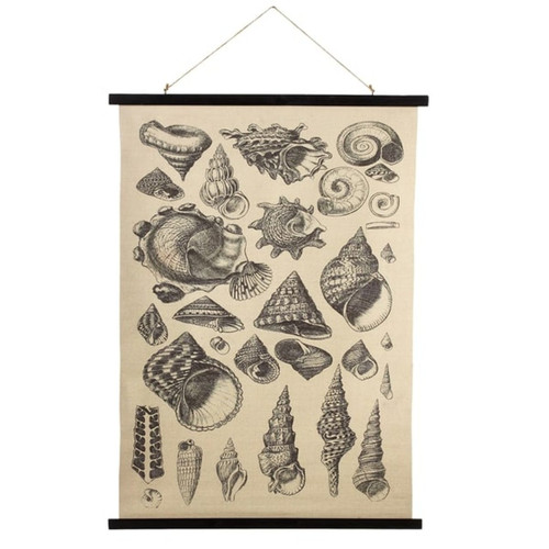 Midwest CBK Seashell Varieties Printed Canvas Wall Decor 41.25 Inches