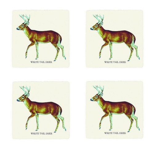 Woodland White Tail Deer Absorbent Drink Coasters Set of 4