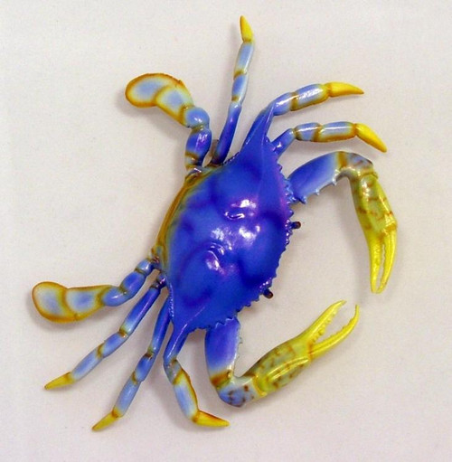 Great Land Crab Wall Decor A05 Six Inch