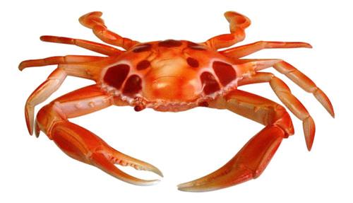 6 inch Reddish Crab Tiki Deck Kitchen Wall Decor