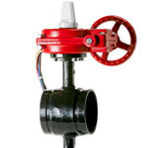 Ductile Grooved 175 PSI Normally Closed BF Valves