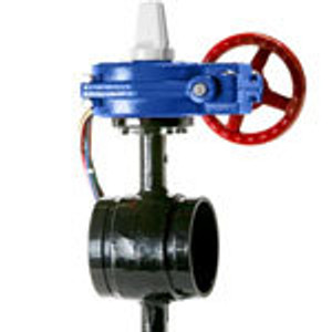HPG1C Ductile Grooved 300 PSI Butterfly Valves