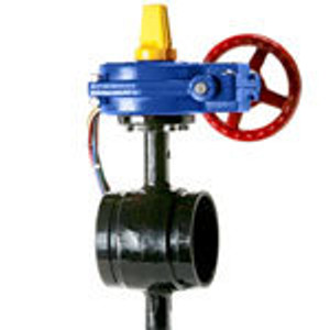 HPG Ductile Grooved 300 PSI Butterfly Valves