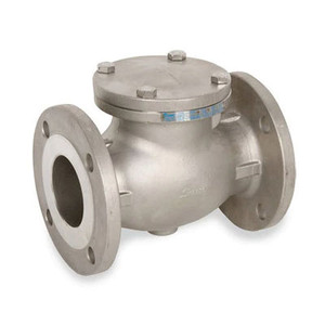 2 in. Flanged Check Valve 316SS 150 LB, Stainless Steel Valve