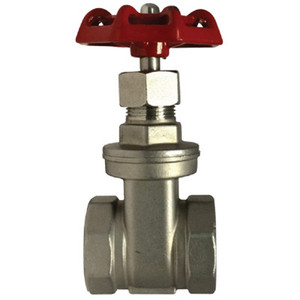 1/2 in. 200 PSI, Gate Valve, 316 Stainless Steel, NPT Threads