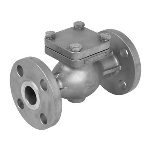 2-1/2 in. Flanged Check Valve 316SS 300 LB, Stainless Steel Valve