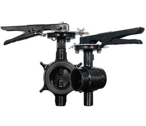 2 in. Grooved Butterfly Valve (BFV) 300PSI Lever Type