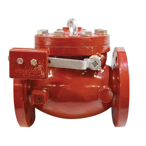 3 in. AWWA C508 Ductile Iron, 300 PSI Swing Check Valve With Outside L/W
