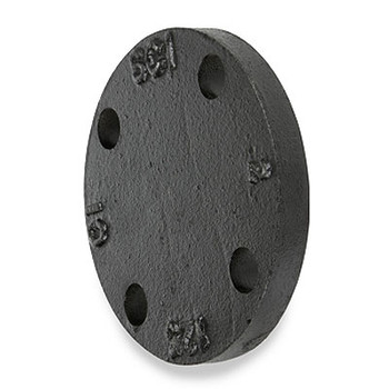 10 in. 125 lb Cast Iron Black Blind Flange