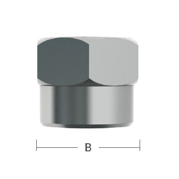 1/4 in. Cap Nut 303 Stainless Steel Beverage Fitting