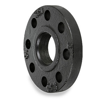 6 in. 250 lb Cast Iron Black Threaded Companion Pipe Flange