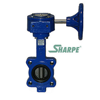 14 in. 200 PSI Ductile Iron Body Lug Style Butterfly Valve, 316 Stainless Steel Disc & Stem, BUNA Seat, Gear Operated Series 17