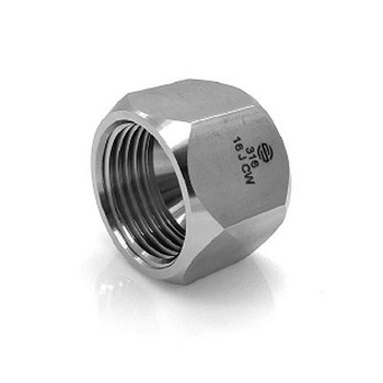 1/4 in. Tube Cap 316 Stainless Steel Hydraulic JIC 37° Tube Fitting Adapter