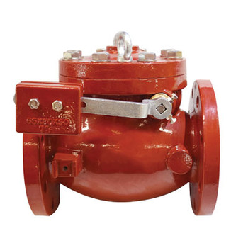 4 in. AWWA C508 Ductile Iron, 300 PSI Swing Check Valve With Outside L/W
