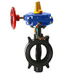 HPW Ductile Wafer 300 PSI Butterfly Valves