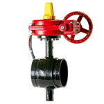 DG Ductile Grooved 175 PSI Butterfly Valves