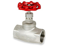 316 Stainless Steel NPT Threaded Globe Valves