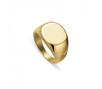 Gold Steel Signet Ring