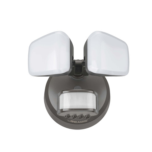 Pro 2-Head Motion Security Light
