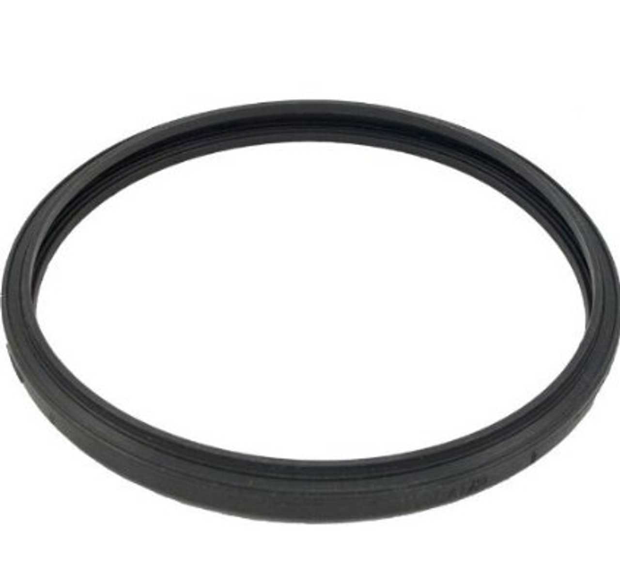 Pentair Aquatic Systems 05501-0005 Lens Gasket Replacement Sta-Rite Large Underwater Pool Light