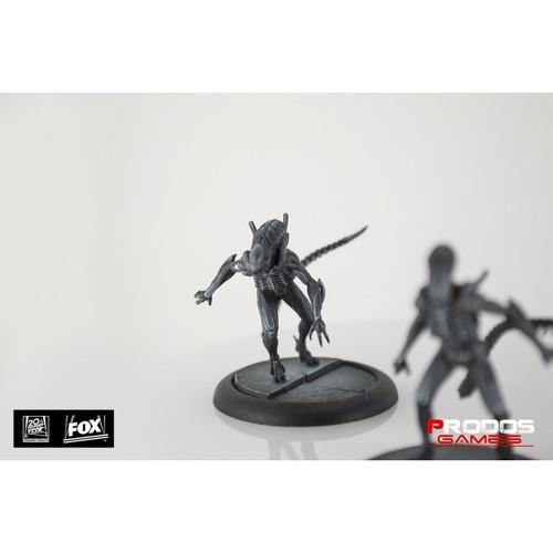 AvP - Alien Warriors