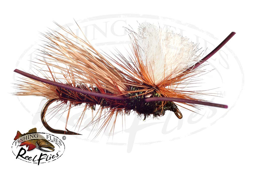 PMX Peacock Hopper Fly