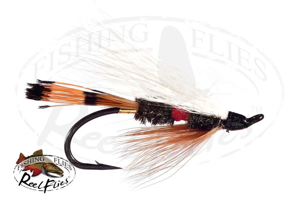 Royal Coachman Salmon