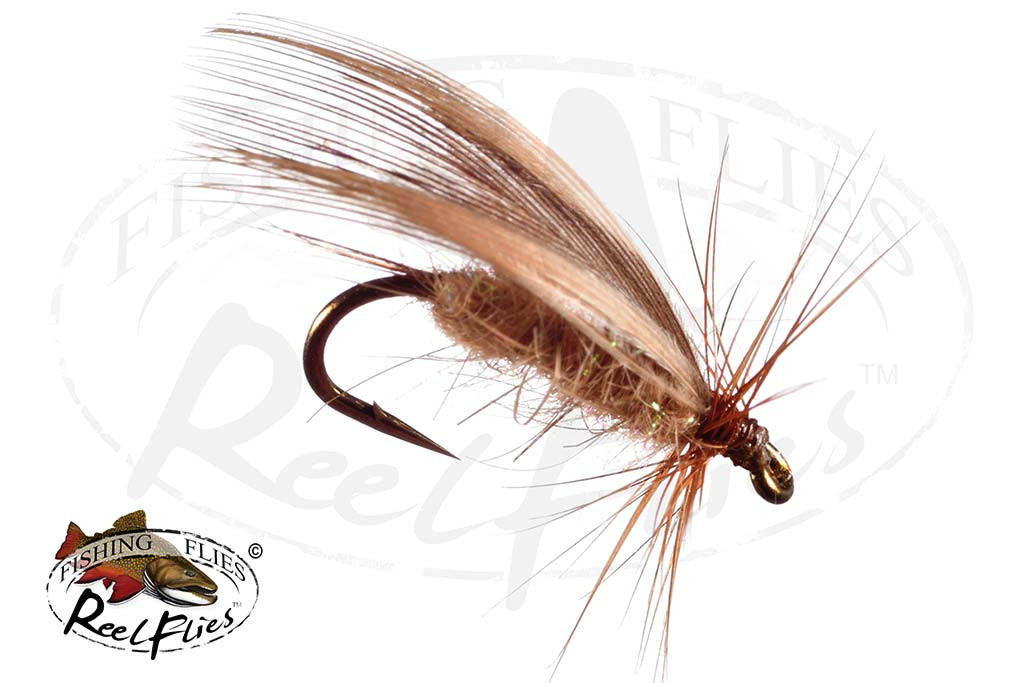 Top Winged Caddis Fly