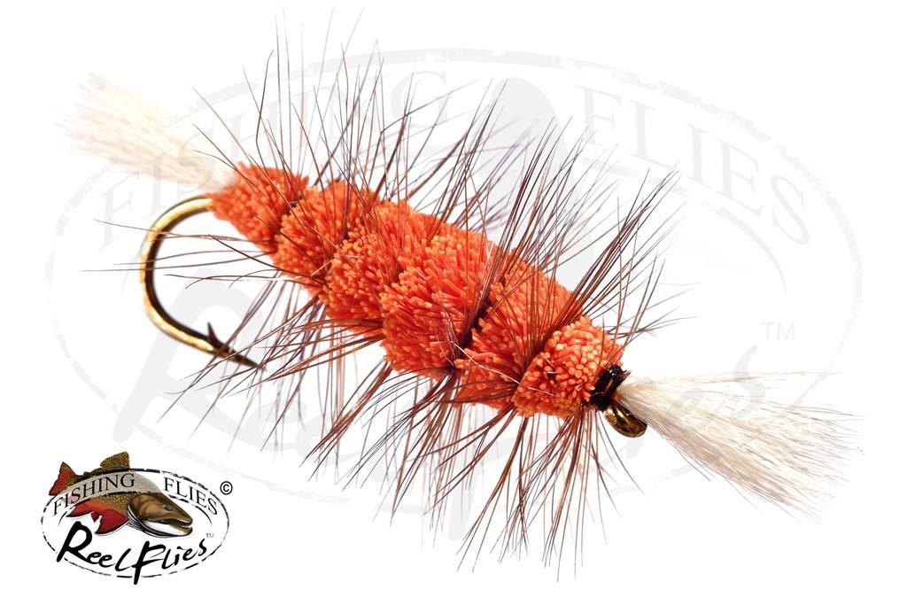 Bombers Orange Body White Tail