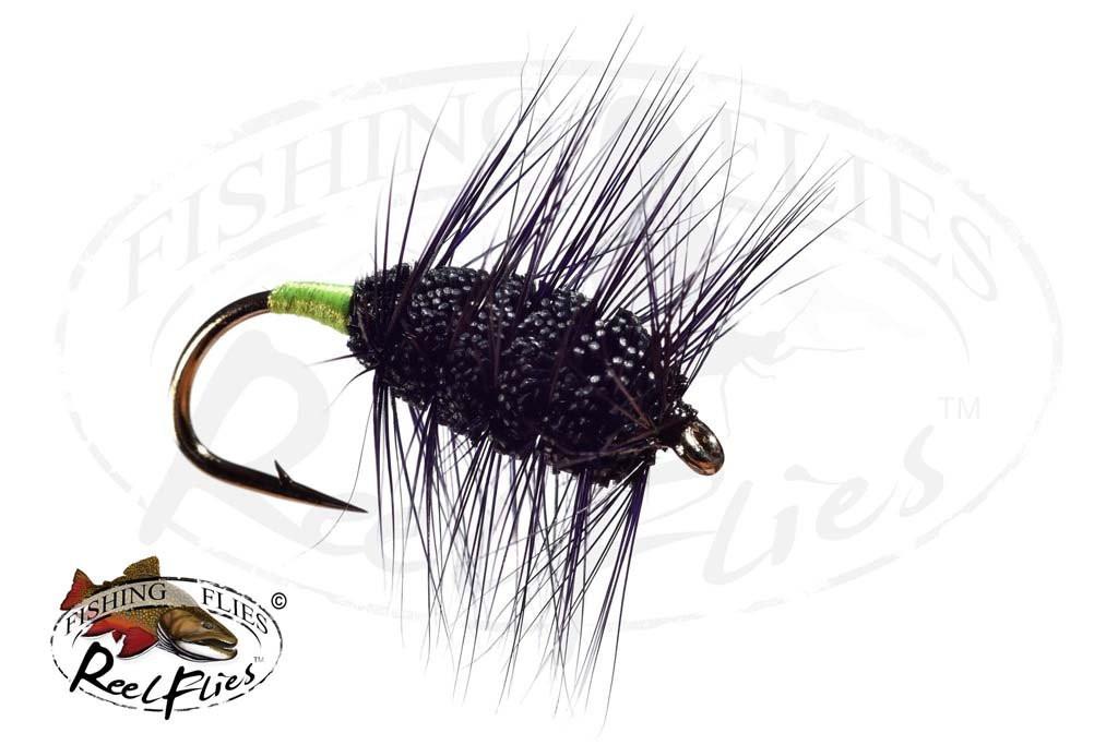 Black Buck Bug Green Butt