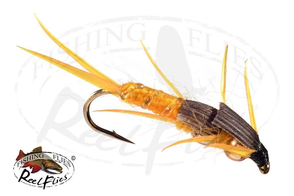 Reel Golden Stonefly Double Bead Head
