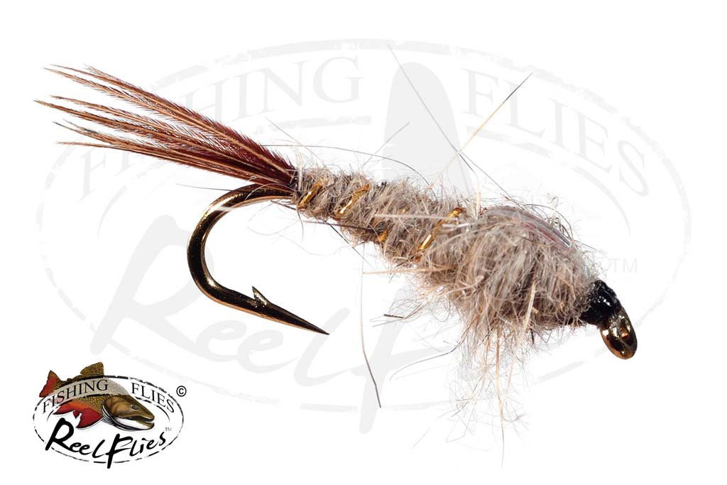 Hare's Ear Pheasant Tail Flashback