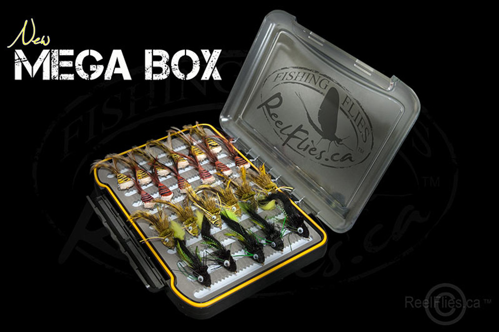 mega-fly-box