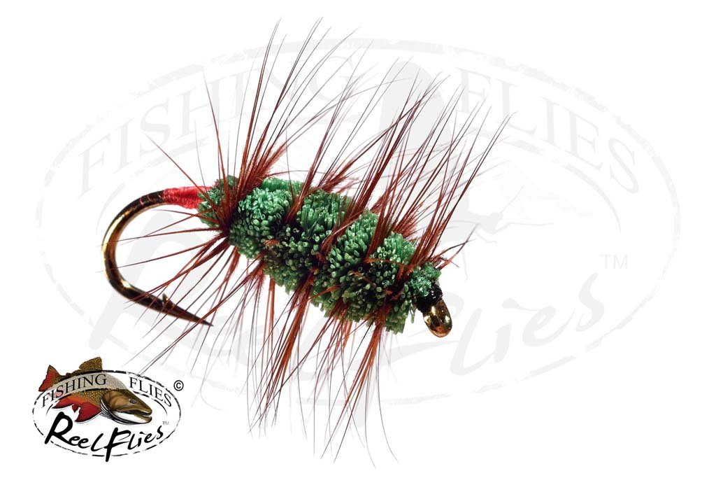 Green Buck Bug Red Butt