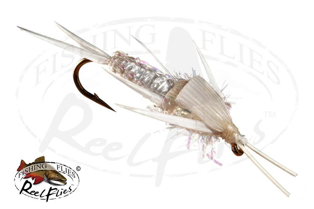 White Braided Stonefly
