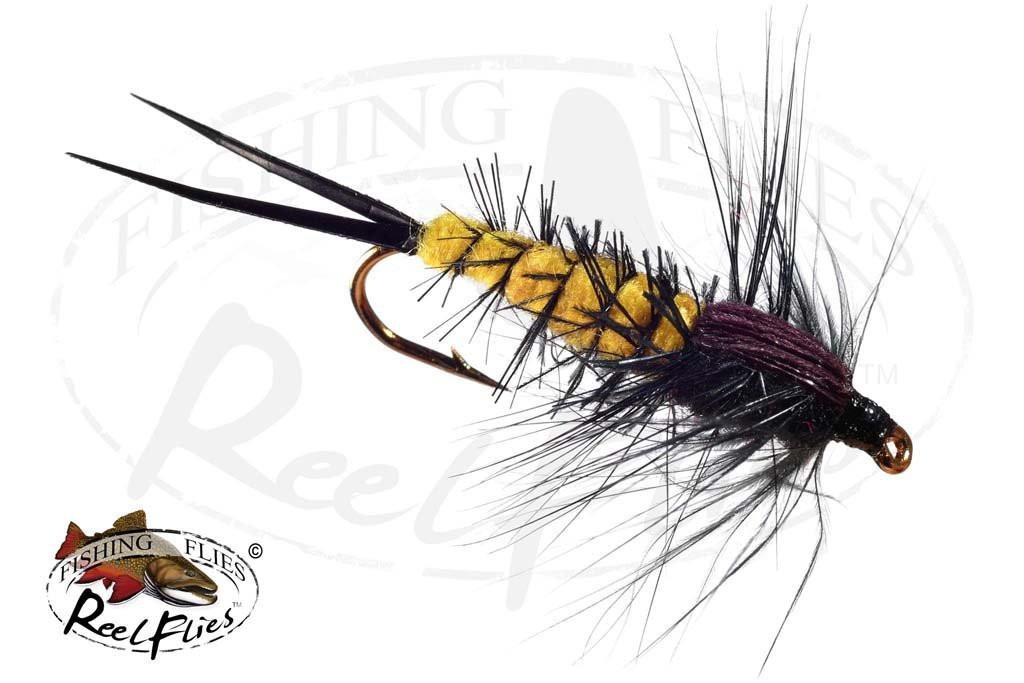 Hexagenia Nymph Yellow - Black