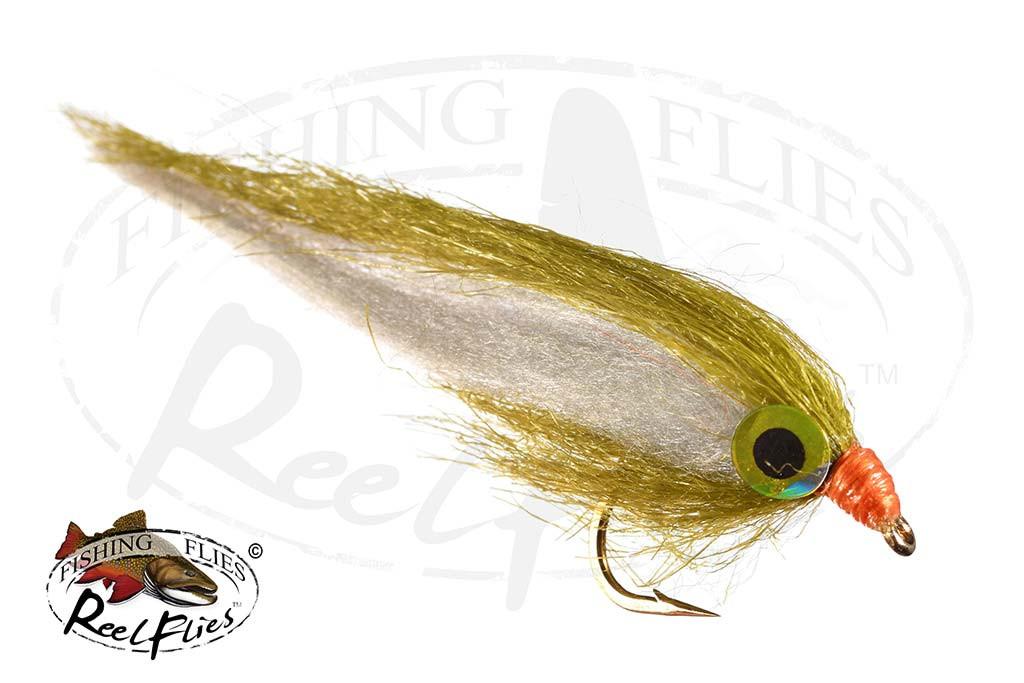 Olive Dancer Fly