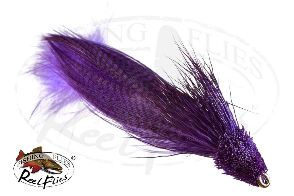 Zoo Cougar Purple