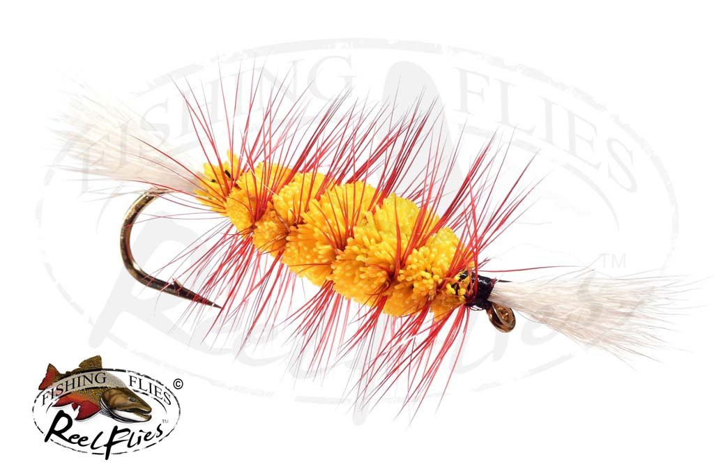 Bomber Yellow Red Hackle