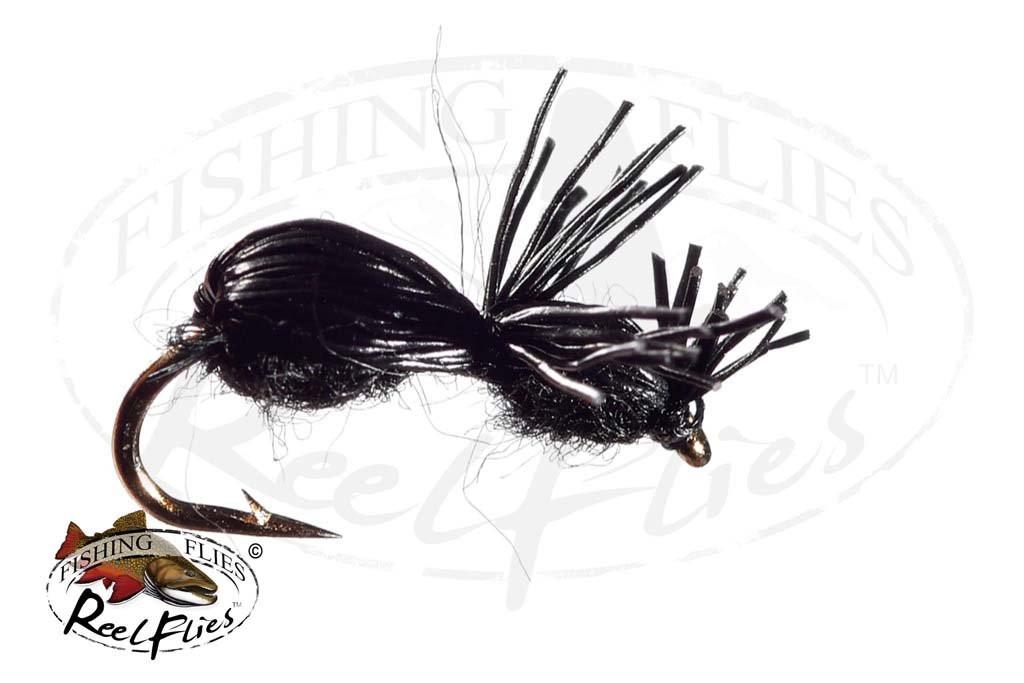 Black Deer Hair Ant
